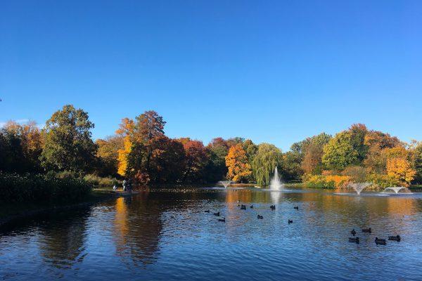 Gdzie na spacer we Wrocławiu – Park Południowy
