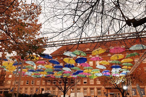 Co zobaczyć w Szczecinie?